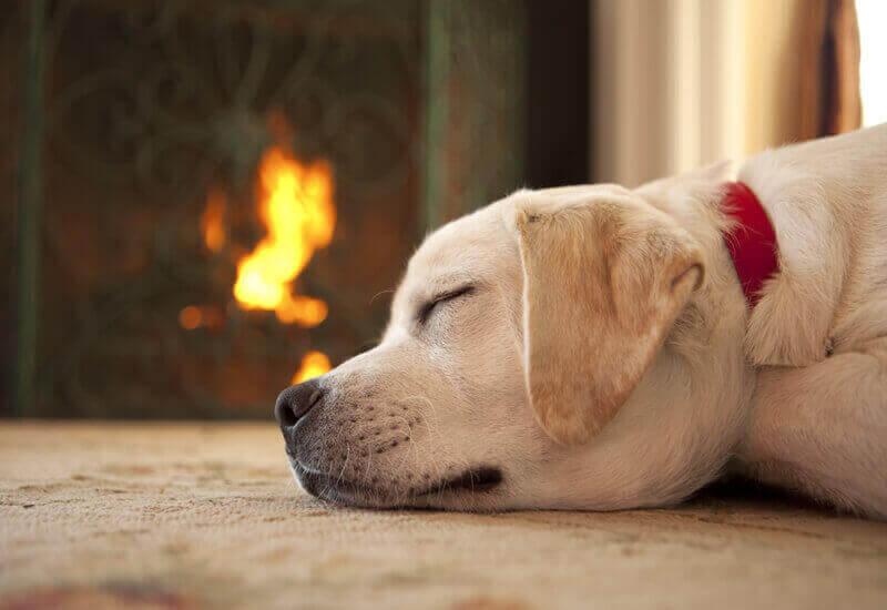 まずはエアコンやヒーターで室内全体を暖めて