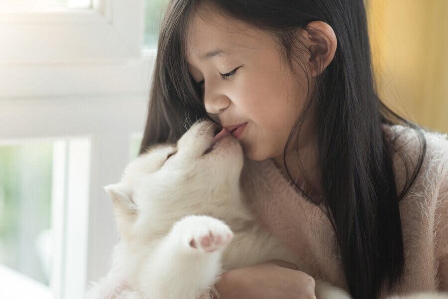 犬が飼い主の顔を舐めるのは愛情表現?舐めてくる部位によって変わる愛犬の心理とは