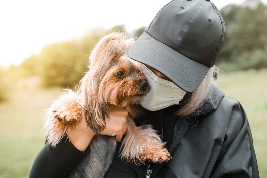 新型コロナウイルスは「犬から人」に感染する?