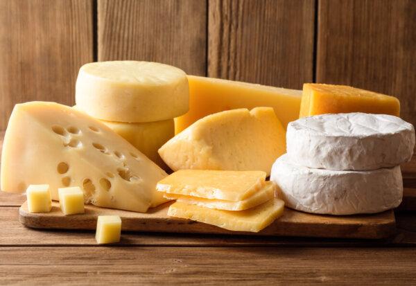 犬はチーズを食べても大丈夫?犬にチーズを与えるメリットと注意点
